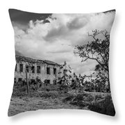 Old House And Cows - Bw Throw Pillow by Fabio Giannini