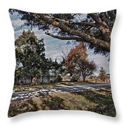 Old House And The Trees Throw Pillow