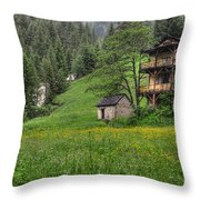 Old House On The Green Field Throw Pillow