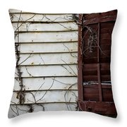 Old House Red Shutter 4 Throw Pillow