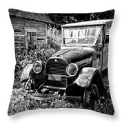 Old Hudson Throw Pillow