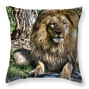 Old King Lion Throw Pillow