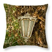 Old Lamp Hanging On Tree  Throw Pillow