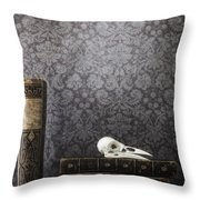 Old Library Throw Pillow
