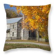 Old Log House Throw Pillow