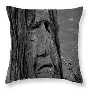 Old Man River Throw Pillow
