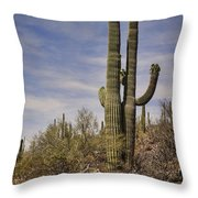 Old Married Couple Throw Pillow