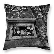 Old Monuments Throw Pillow