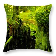 Old Mossy Stump Throw Pillow