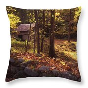 Old Mountain Shed Throw Pillow by Paul W Faust -  Impressions of Light