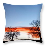 Old Oak Trees On Old Humboldt Road Throw Pillow