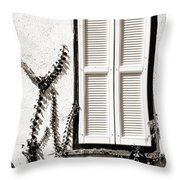 Old Painted Shutter 2 Throw Pillow