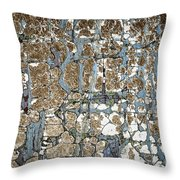 Old Painted Wood Abstract No.5 Throw Pillow by Elena Elisseeva