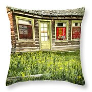 Old Park Motel Throw Pillow