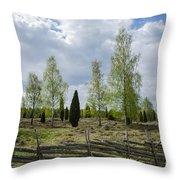 Old Pastureland Throw Pillow