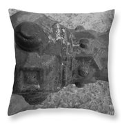 Old Pipe Fence Throw Pillow