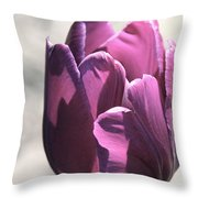 Old Purple Throw Pillow
