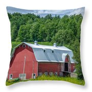 Old Red 3623c Throw Pillow