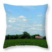 Old Red Barn And Fields Throw Pillow