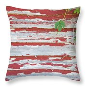 Old Red Barn With Peeling Paint And Vines Throw Pillow