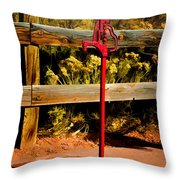 Old Red Pump Throw Pillow