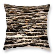 Old Roof Throw Pillow