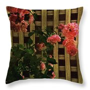 Old Roses, Old Wood Throw Pillow