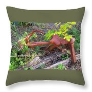 Old Rusty Bike In The Weeds 2 Throw Pillow