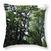 Old Section Mt Hope Cemetery Throw Pillow