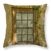 Old St Augustine Window Throw Pillow
