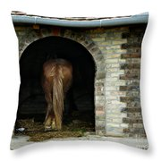 Old Stable Throw Pillow