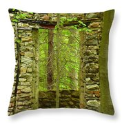 Old Stone House Throw Pillow