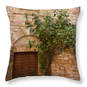 Old Stone House With Plants  Throw Pillow