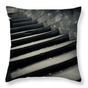Old Stone Stairway Throw Pillow