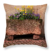 Old Stone Trough And Flowers In Alsace France Throw Pillow by Greg Matchick