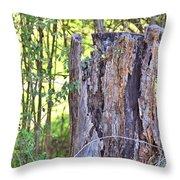 Old Stump Throw Pillow