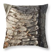 Old Style Gutter Throw Pillow