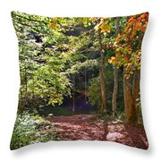 Old Swimming Hole Throw Pillow