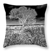 Old Texas Fields Throw Pillow