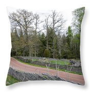 Old Time Gravel Road Throw Pillow