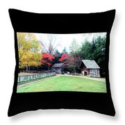 Old Time Living Throw Pillow
