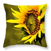 Old Time Sunflower Throw Pillow