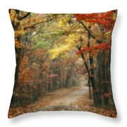 Old Trace Fall - Along The Natchez Trace In Tennessee Throw Pillow by T Lowry Wilson