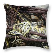 Old Trap  Throw Pillow by Minnie Lippiatt