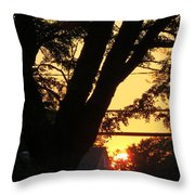 Old Tree And Sunset Throw Pillow