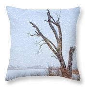 Old Tree In Winter Throw Pillow