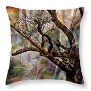 Old Tree Photoart Throw Pillow