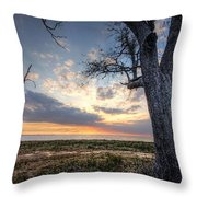 Old Tree Sunset Over Oyster Bay Throw Pillow