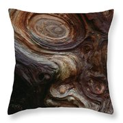 Old Tree Trunk With Knots And Patterns  Throw Pillow