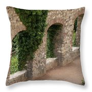Old Wall In  Praga Throw Pillow